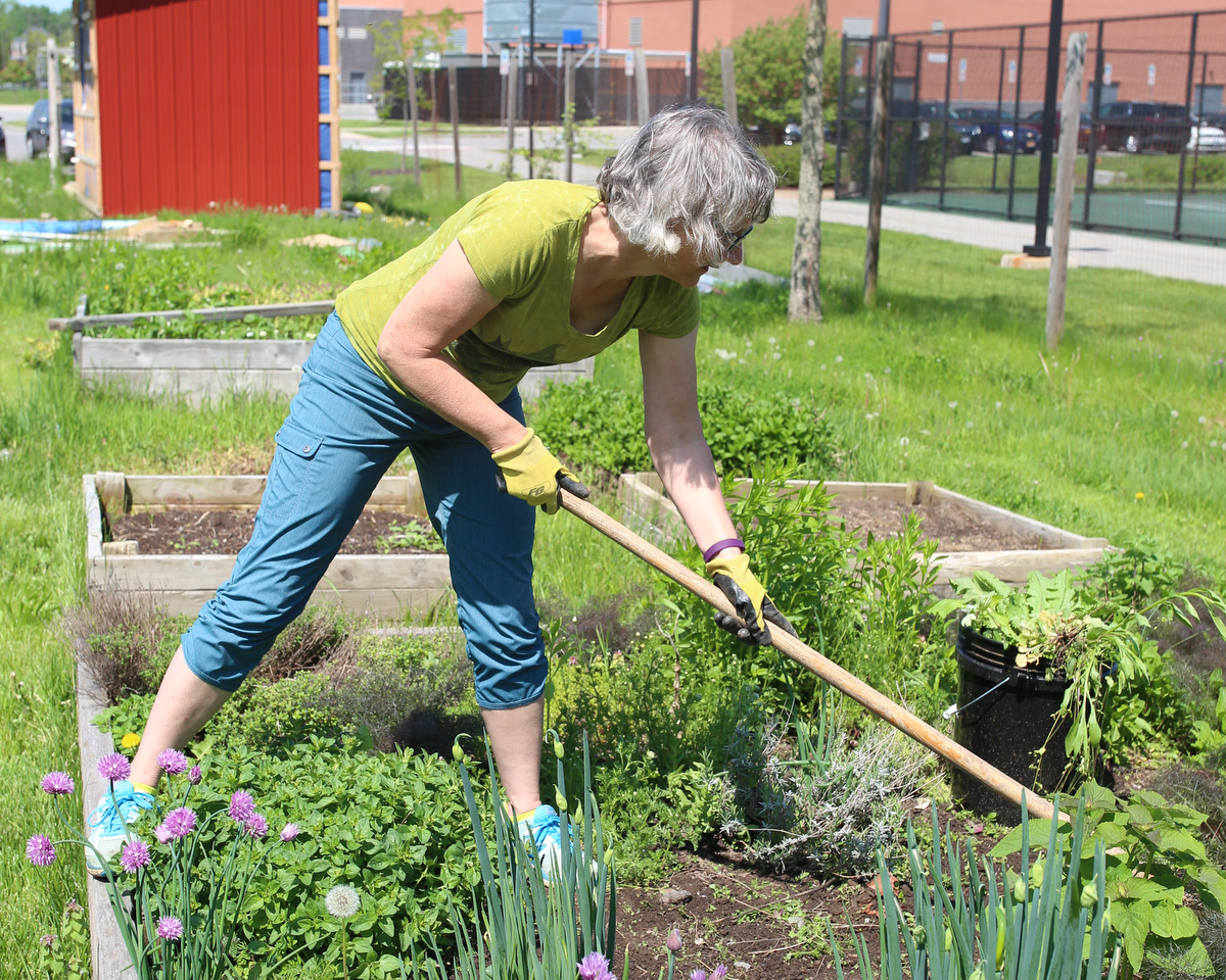 Dawn Carter, the garden coordinator, works on a raised bed at the RIT Community Garden in Henrietta, N.Y. on May 23, 2018. Photo by Bridget Fetsko